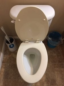 Deep Clean 2 Toilet Seat Up